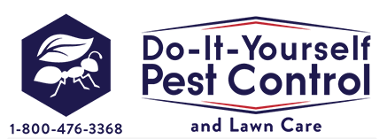 Do It Yourself Pest Control-SmartsSaving